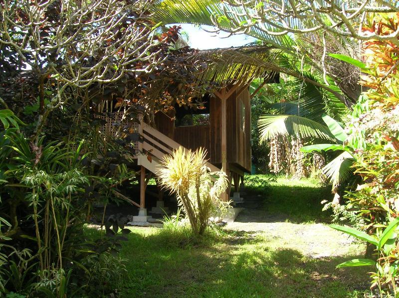 Hikina Studio in Kehena - Image 1 - Pahoa - rentals