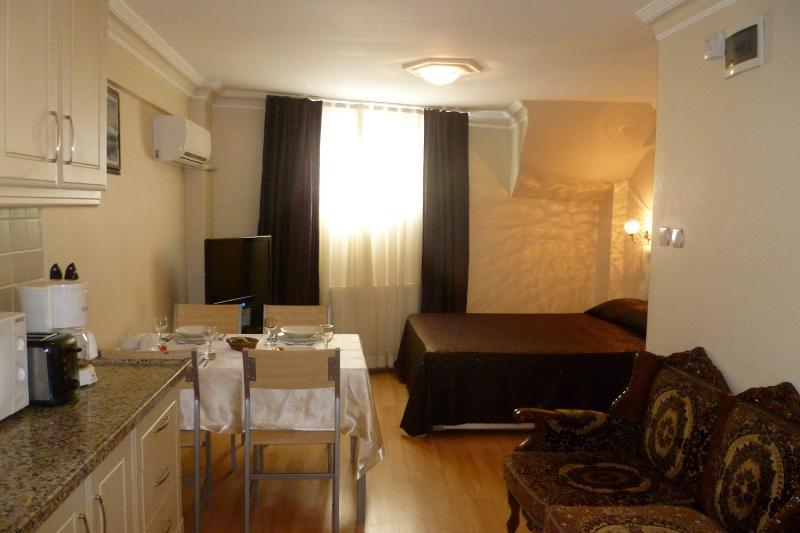Sultanahmet - Istanbul, Basileus Apartment - Image 1 - Turkey - rentals