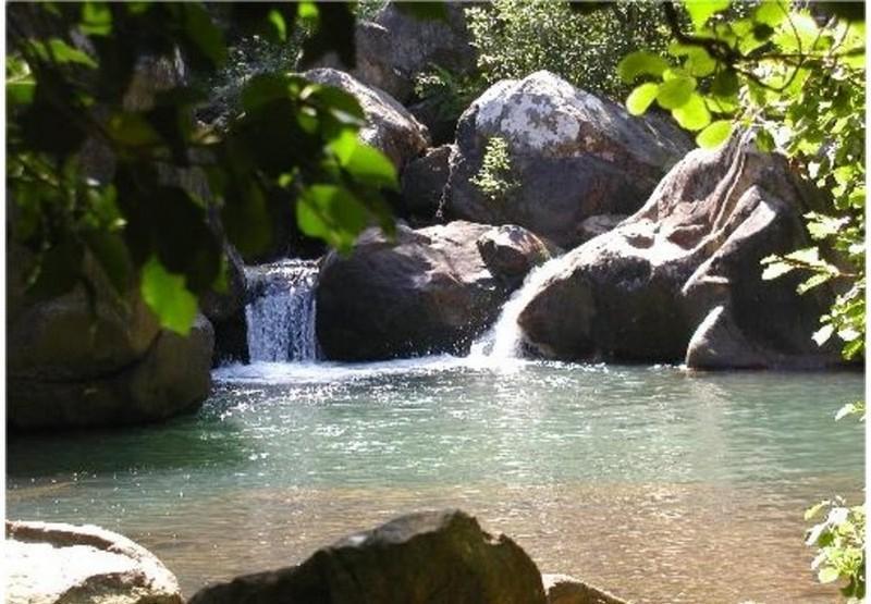 Rio Majaceite - Precioso Apartamento Rural en la Sierra de Cadiz - El Bosque - rentals