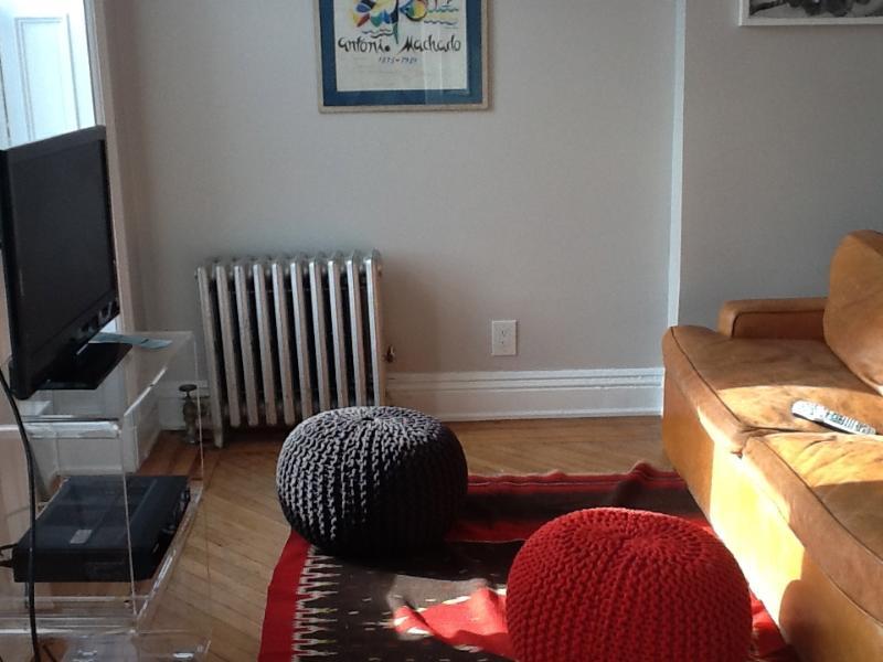 Trendy, spacious one-bedroom in Brooklyn - Image 1 - Brooklyn - rentals