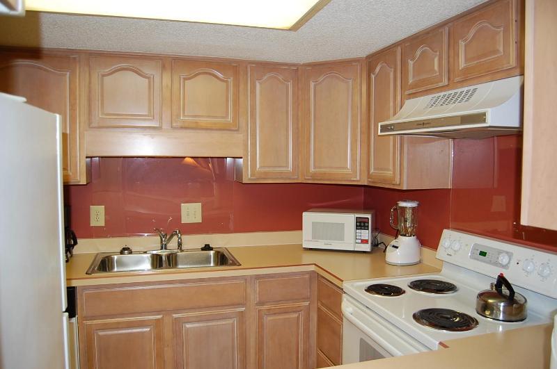 large modern kitchen - Amelia Island Plantation - Amelia Island - rentals