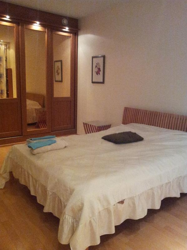 3rd Master bedroom - 3BR & living + sauna + jacuzzi in Kallio - Helsinki - rentals