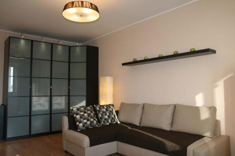 living room - Cosy apartment close to the city center - Moscow - rentals
