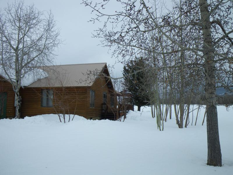 apt home not lacking of snow - A Perfectly Pleasant Place - Driggs - rentals