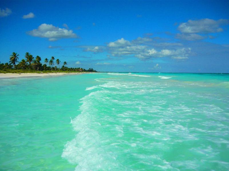 Public Beach - Luxurious NEW Condo-Akumal/Tulum TAO Riviera Maya - Akumal - rentals