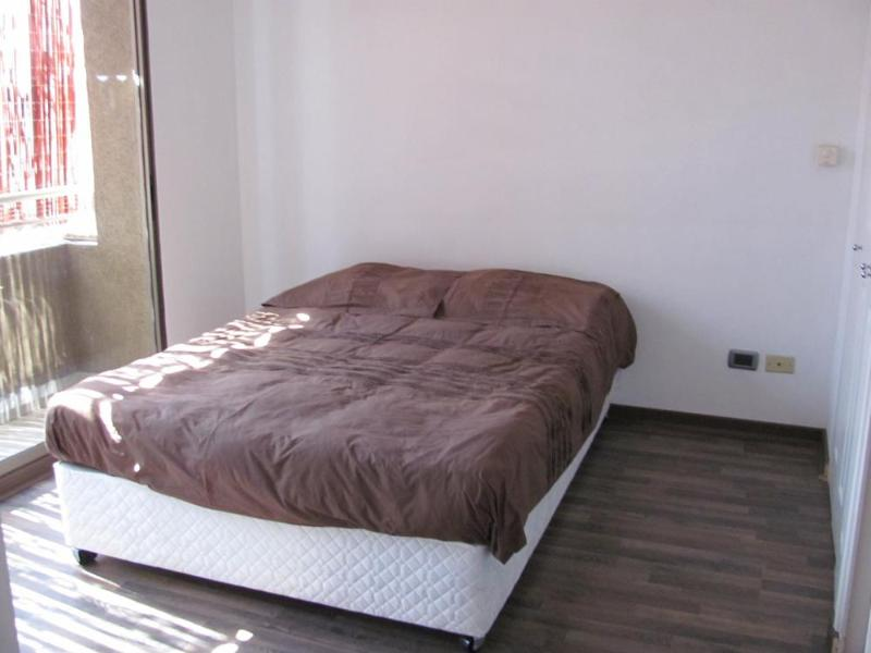 Rent for day nice apartment in Bellas Artes, Santiago - Image 1 - Chile - rentals