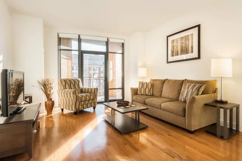 Living Room - Washington DC- 2 Bedroom / 2 Bath Luxury Apartment - District of Columbia - rentals