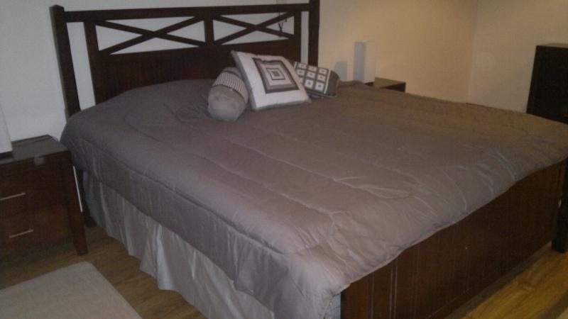 master suite - 3 BDR Costa Rica Condo for Rent - Escazu - rentals