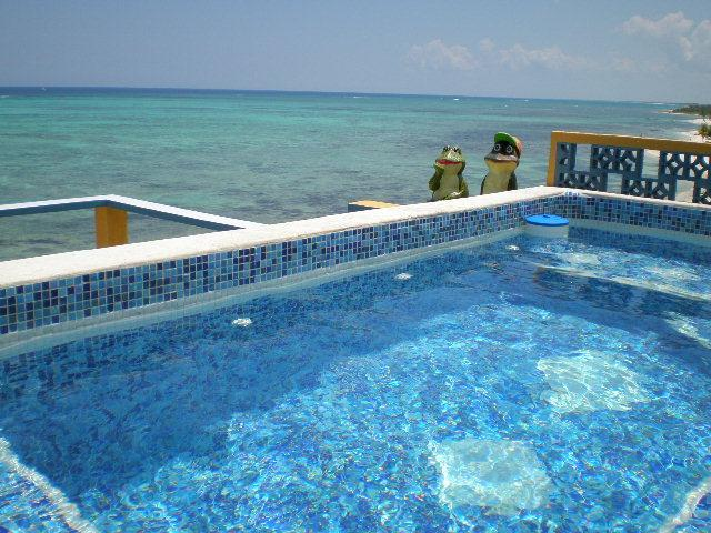 Roof Top Dipping Pool for 12 People With Roof Top Living Room and Bar - March Wk Available Beach Villa Cook, 2 Pools, WiFi - Tulum - rentals