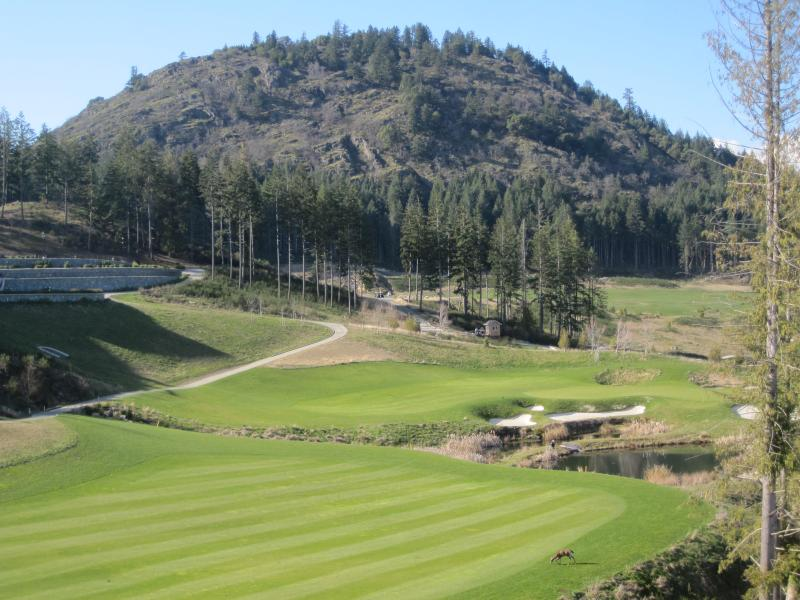 View of Bear Mountain 18th fairway & Mt. Finlayson - Serenity at Stonehaven - Victoria - rentals