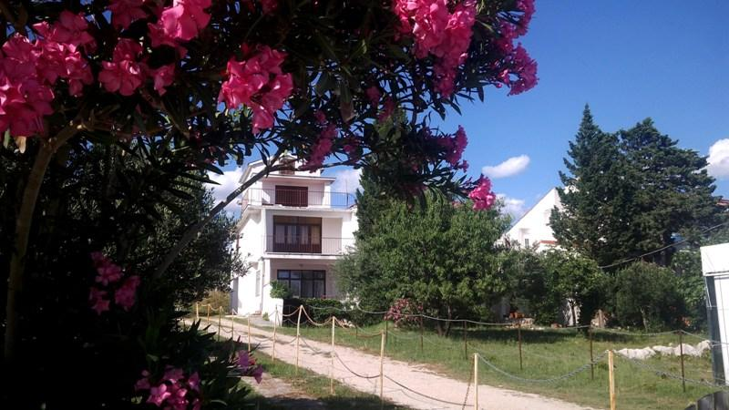 Seaside apartment Miky 4 for 3 persons in Novalja - Image 1 - Novalja - rentals
