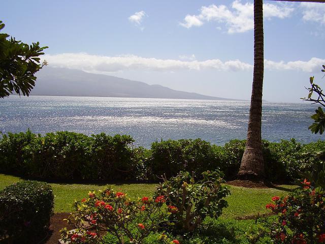 Island Sands Resort 1 Bedroom 109 - Island Sands Resort 1 Bedroom 109 - Maalaea - rentals