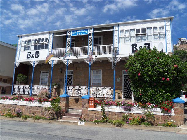 Mossel Bay - Bluewhale Lodge - Garden Route - South Africa - Bluewhale Lodge B & B - Mossel Bay - rentals