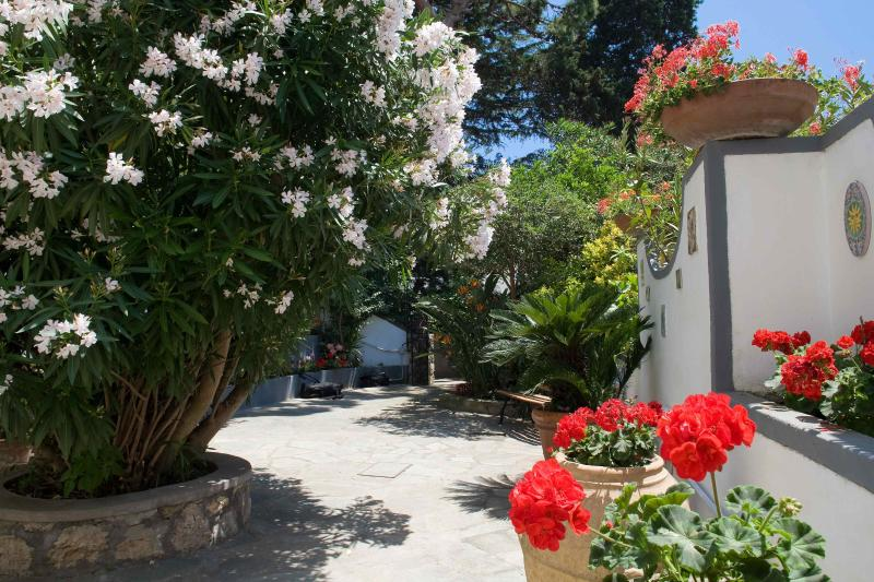 Charming house in the heart of Capri island - Image 1 - Capri - rentals