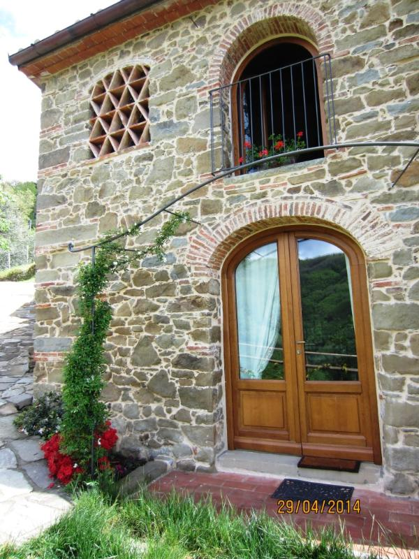 front view: door and windows - ULIVETO: your view on olive trees - Pistoia - rentals