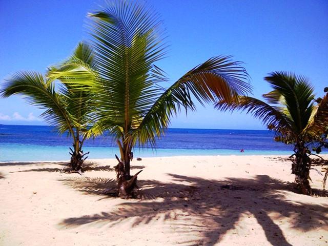 Apt In Residence On Las Ballenas Beach - Image 1 - Las Terrenas - rentals