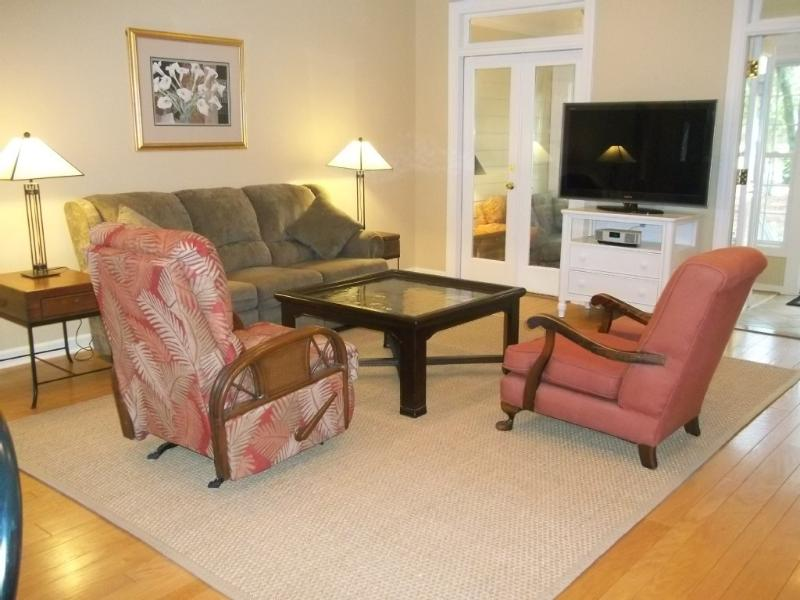 Spacious living area, high ceilings, french doors. - Awesome Contemporary Cottage... King Bed... dog ok - Murrells Inlet - rentals