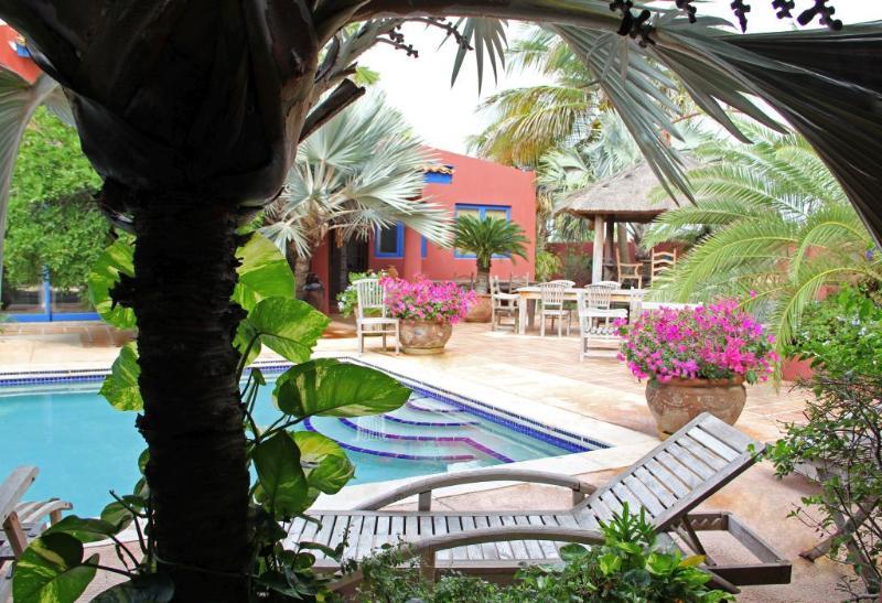Large shared pool and heated jacuzzi, lush garden setting - La Maison Aruba - Studio #1  Studio with pool 800 yd to beach Marriott  *Flash Sale* - Noord - rentals