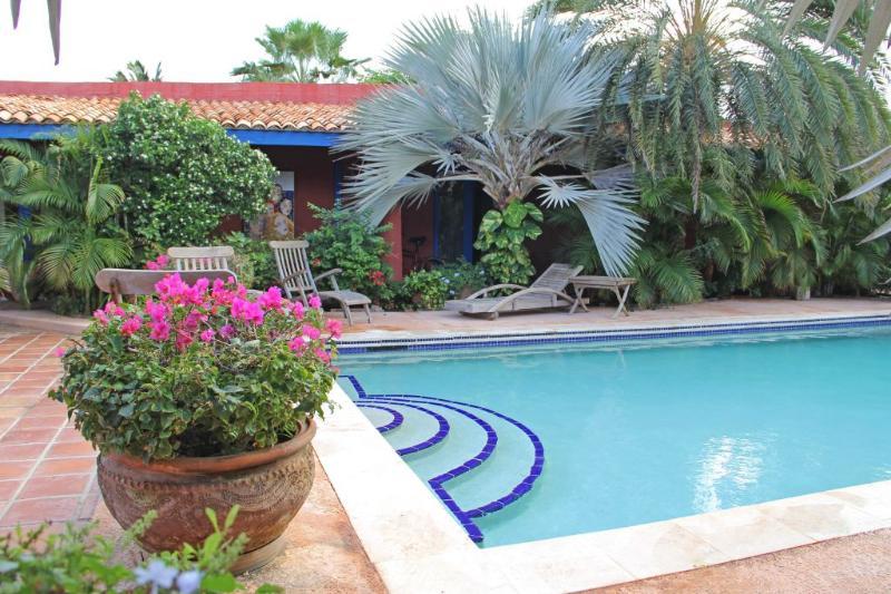 La Maison Aruba - Studio #3 Studio with pool 800 y - Image 1 - Palm/Eagle Beach - rentals