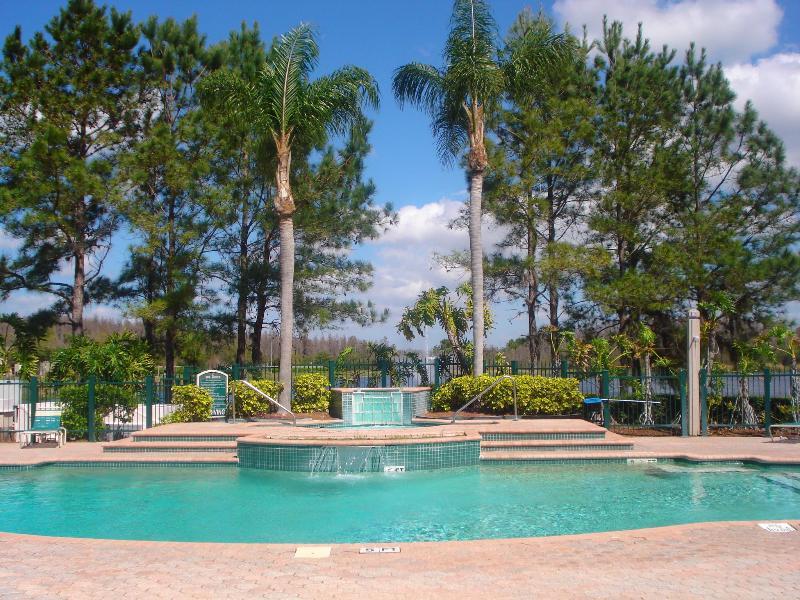 Tampa, FL - enjoy beaches & Disney - Image 1 - Lutz - rentals