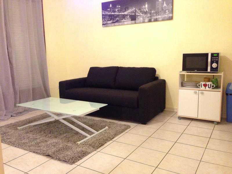 Sofa bed for 2 persons - Apartment close to the airport and the city center Toulouse - Toulouse - rentals
