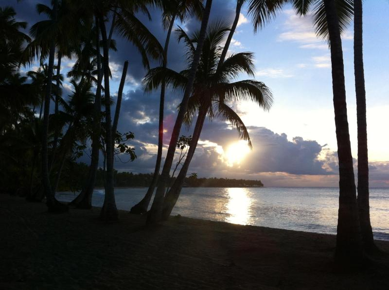 Playa Bonita at Sunset - Oceanfront Condo, Playa Bonita, Las Terrenas, DO - Las Terrenas - rentals