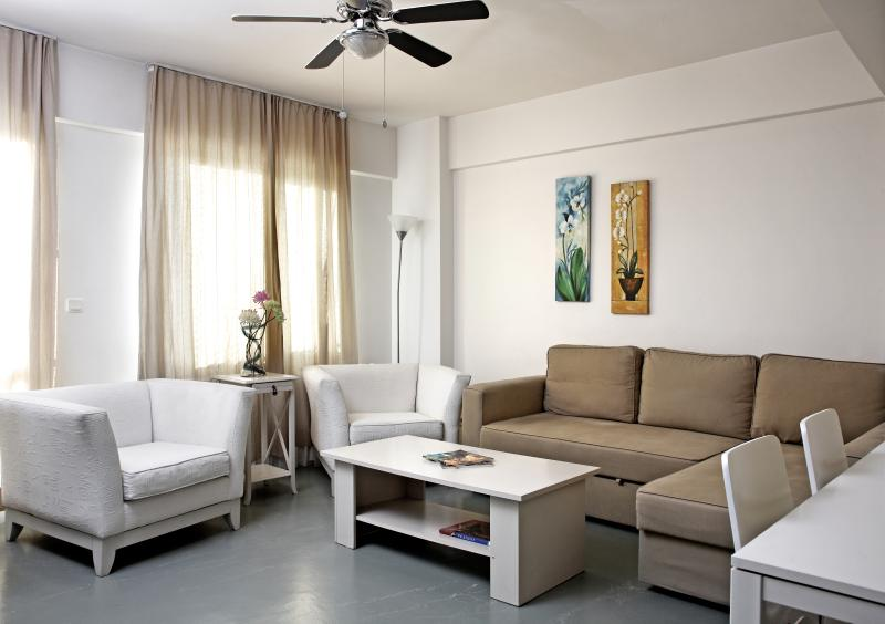 Rental flats in istanbul,flats for rent istanbul - Deluxe Duplex Penthouse Apartment - Istanbul - rentals