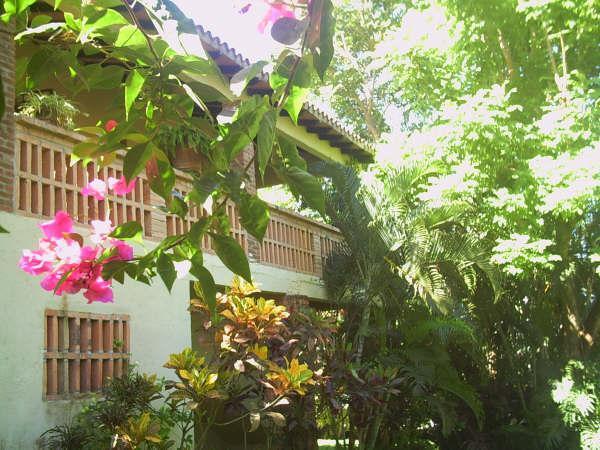 Casa Del Angel - Image 1 - Sayulita - rentals