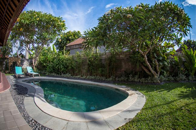 Garden - Rumah Frangipani- 3 bedroom house near the beach - Sanur - rentals