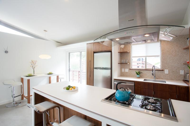 Gourmet Kitchen with Stainless Appliances, Dishes, and Cookware - Mid-Century Modern near SoCo/DT - Austin - rentals
