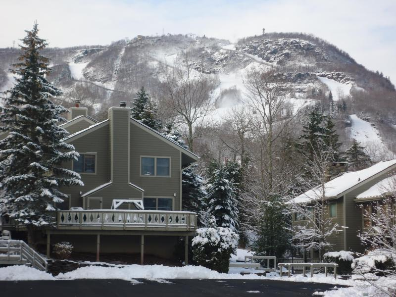 3 BR Ski in Ski out Condo at The Hunter Highlands - Image 1 - Hunter - rentals
