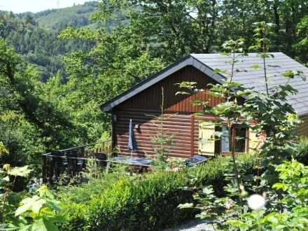 Rochette Vénus 2 102.202 ~ RA8545 - Image 1 - La Roche-en-Ardenne - rentals