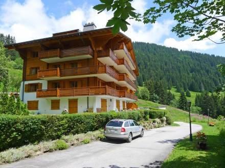 Grand Roc 7 ~ RA9016 - Image 1 - Villars-sur-Ollon - rentals