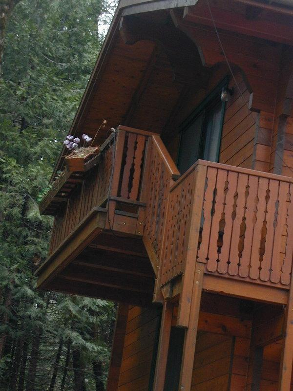 The stairs are outside! - Swiss Chalet in the woods - Grass Valley - rentals
