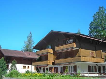 Almis-Bödeli ~ RA10061 - Image 1 - Grindelwald - rentals