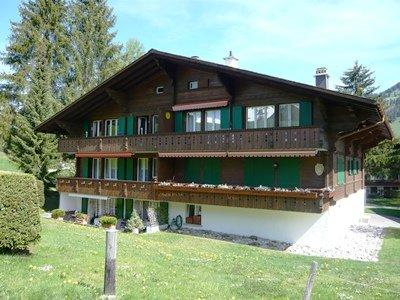 Les Silenes ~ RA9910 - Image 1 - Gstaad - rentals