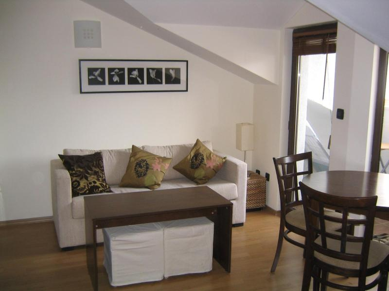 The Living Room - 1 Bedroom Bansko Apartment 200m from Gondola - Bansko - rentals