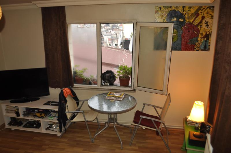 Living Room - Taksim Square / Center of ISTANBUL - Istanbul - rentals