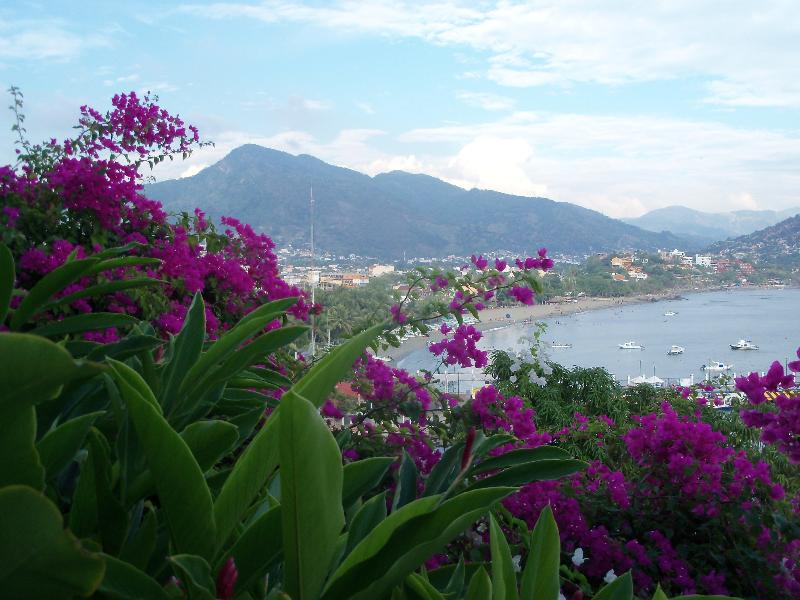 peaceful, yet close to town... - Tropical Paradise; 3 suites each separately rented - Zihuatanejo - rentals