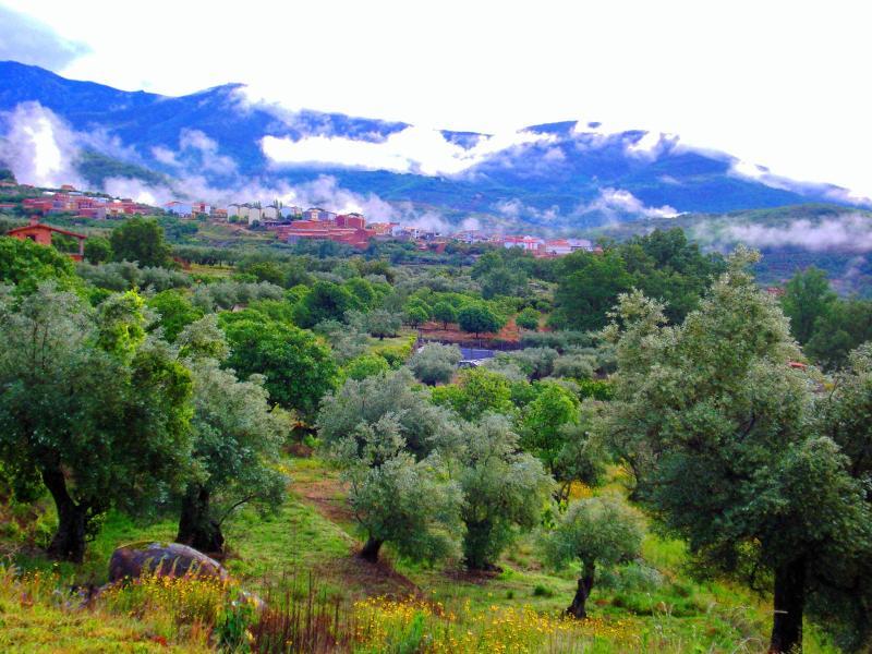 GADEN - RURAL LODGE EXTREMADURA - design farm upto 4pers. - Aldeanueva De La Vera - rentals