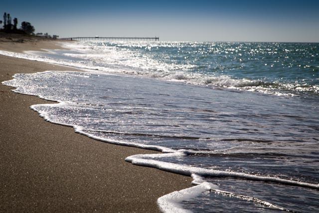 Golden Beach - Venice Condo On The Beach - Venice - rentals