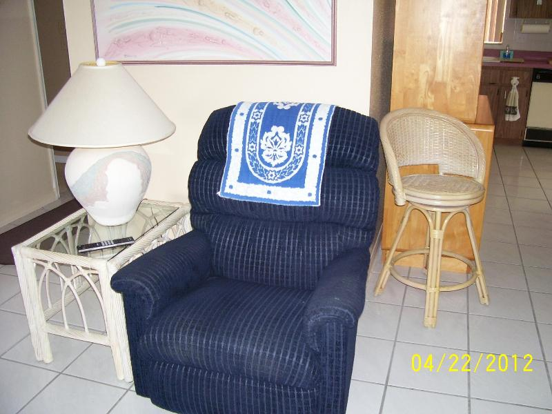 living room - single family home (one level) - New Port Richey - rentals