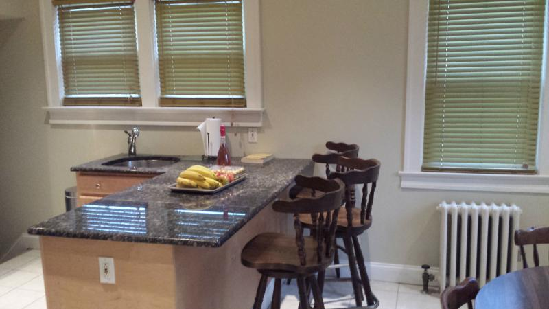 Cozy beautiful 3 Br 2 Bathrooms with Jacuzzi House - Image 1 - Norwood - rentals