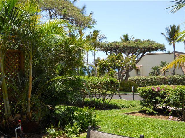 Maui Kamaole 1 Bedroom Garden View B110 - Maui Kamaole 1 Bedroom Garden View B110 - Kihei - rentals