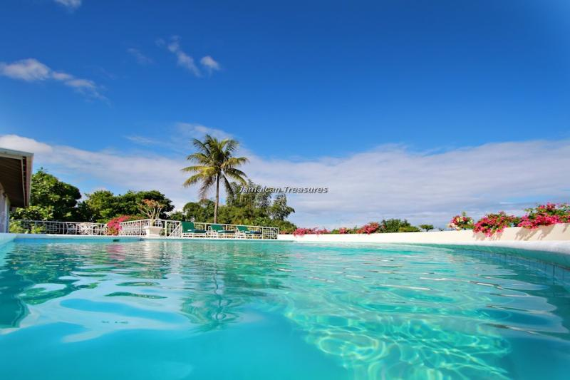 SEAVIEWS! FULLY STAFFED! PRIVATE POOL! Bienvenue - Image 1 - Montego Bay - rentals