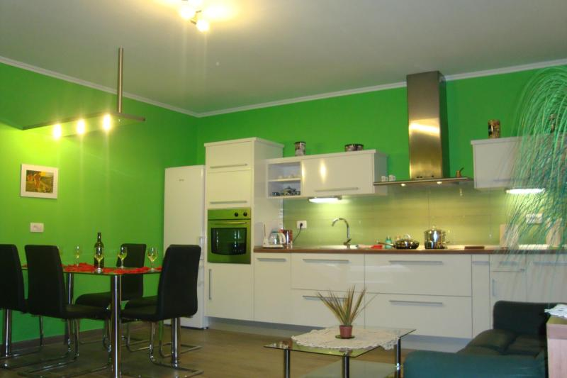 kitchen with all you need for preparing a meal - Accommodation in Vipava valley - ideal for trips - Vipava - rentals