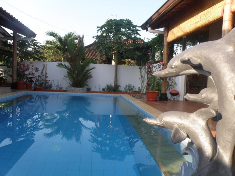 Your Private Swimming pool-always clean and shining blue clear.. - Tropical Oasis - Private Pool, Kitchen and Rooftop Terrace-Amazing Views-1br - Jimbaran - rentals