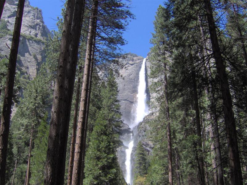Beautiful Yosemite Bridal Falls - L@@K!! Fabulous Hidden Mountain Resort Near Yosemi - Groveland - rentals