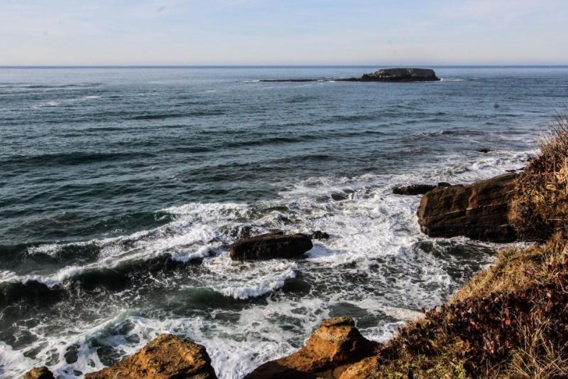 Oceanfront studio w/ ocean views & easy beach access - dogs welcome! - Image 1 - Otter Rock - rentals