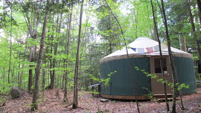 Let the forest and the nearby spring fed mountain brook bring you peace at Mt.Brook Yurt - Mountain Brook Yurt Retreat - Denmark - rentals